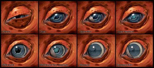 Diferentes diseños de ojos para la criatura creada por Neville Page