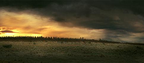 Batalla de los Campos de Pelennor